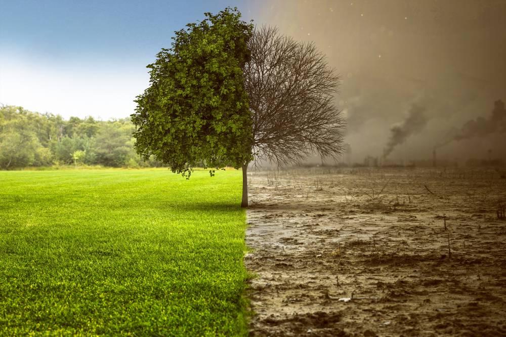 Séismes, pollution des sols…: un site public pour évaluer les risques immobiliers 1